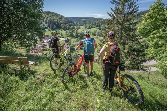 Drei Radfahrer schauen ins Tal in Münsingen.