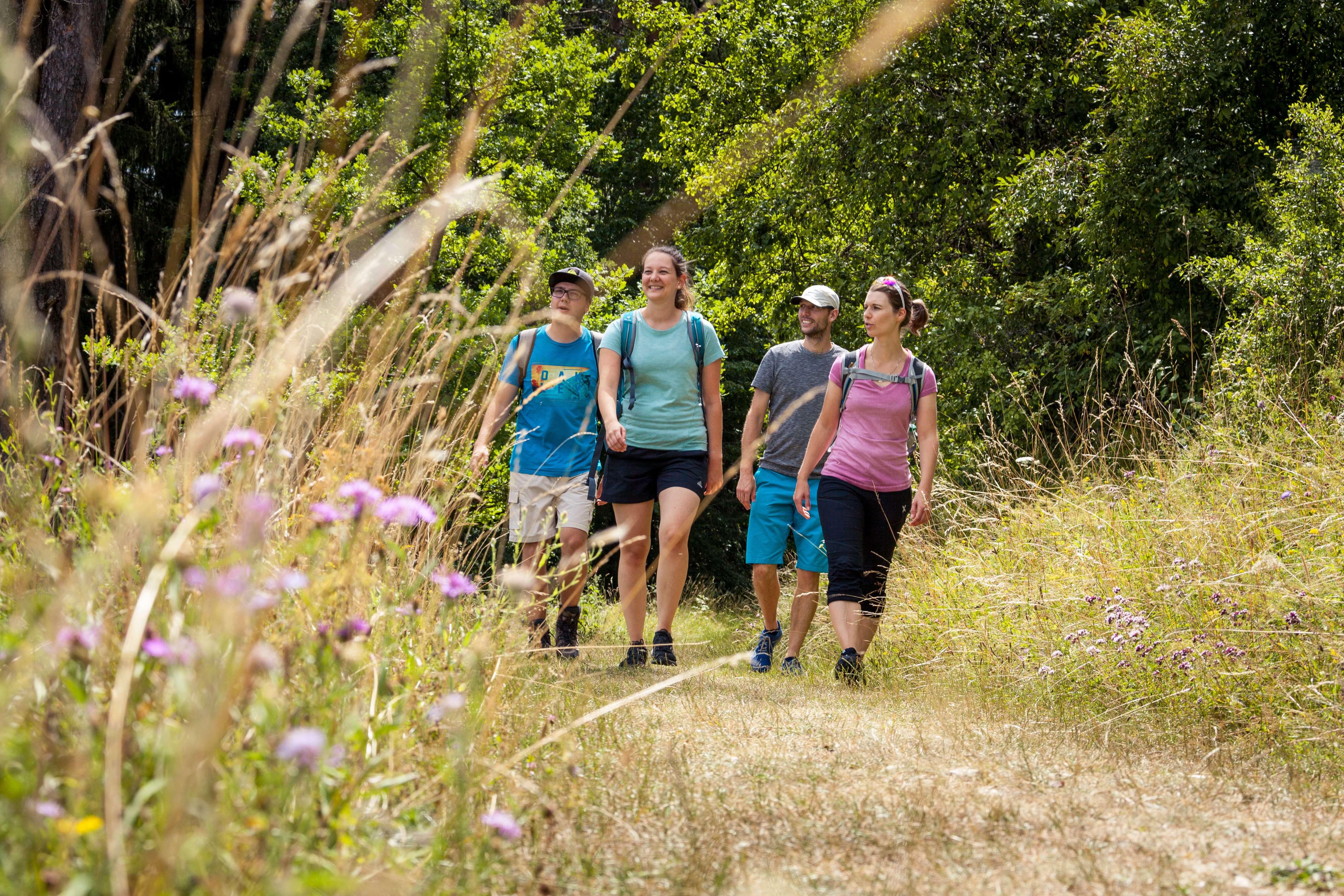 Vier Personen wandern auf einem Feldweg in Münsingen.