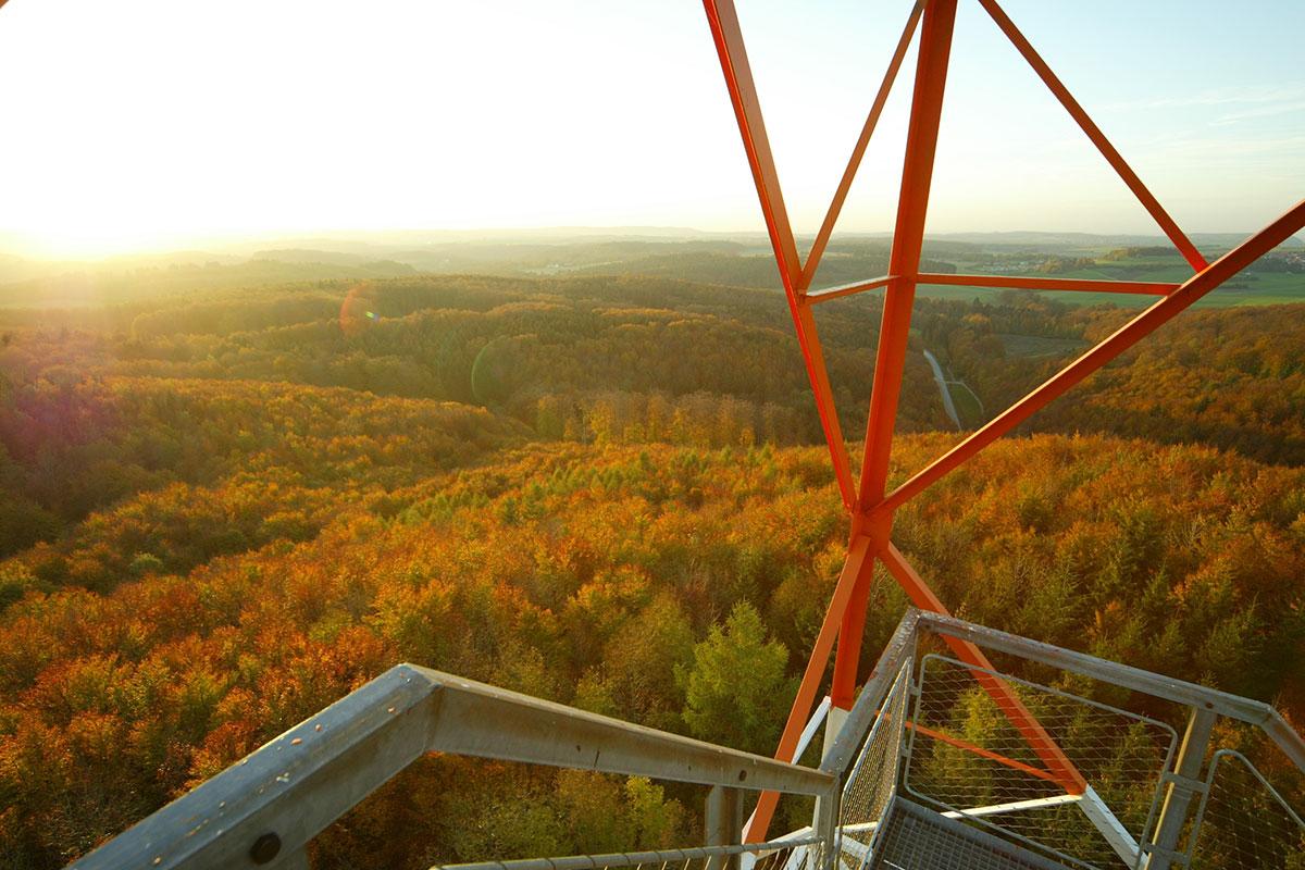 Blick vom Turm im Herbst auf dem ehemaliger Truppenübungsplatz Münsingen.