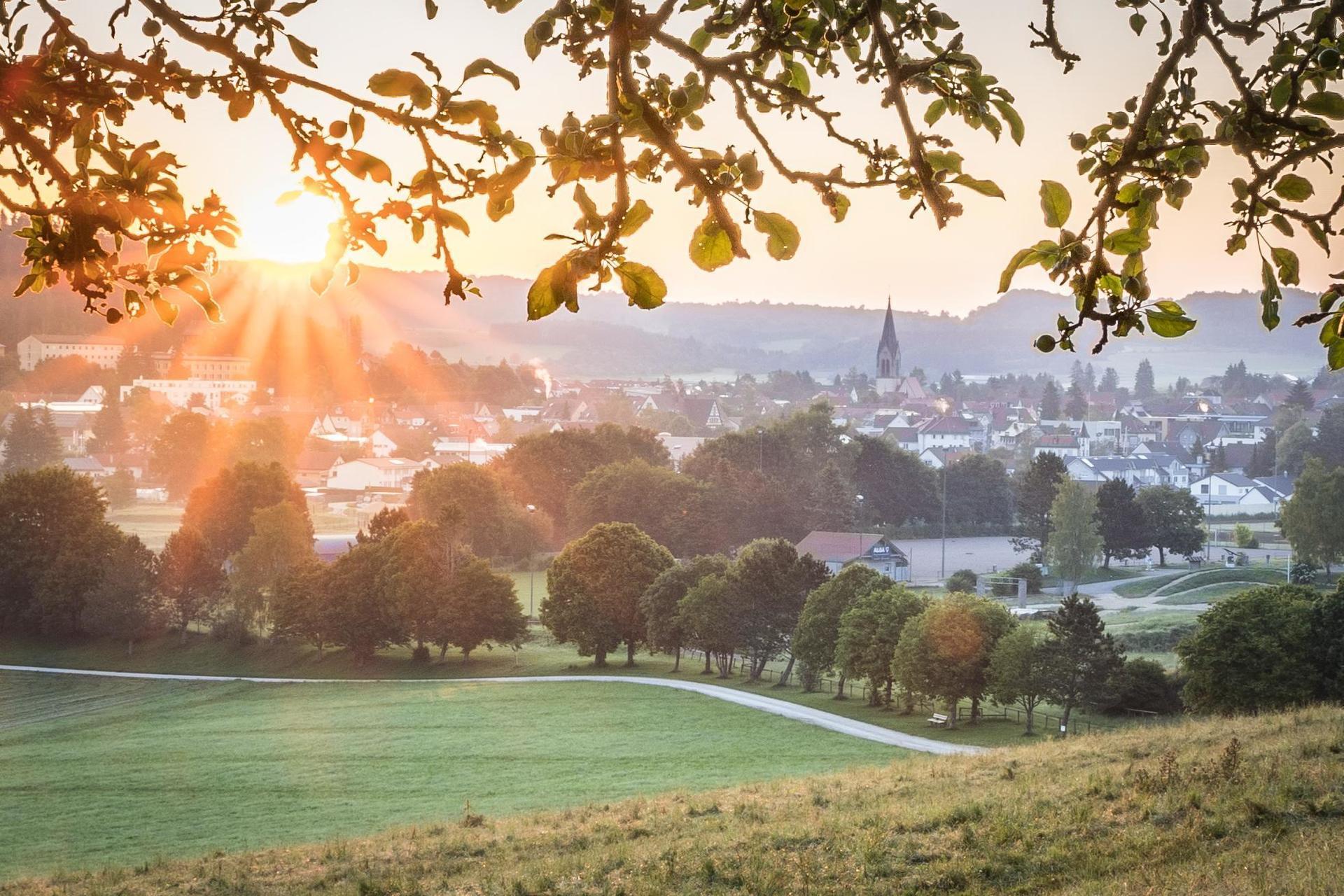 Der Ausblick auf eine Stadt im Sonnenaufgang. Am oberen Bildrand sind einige Äste eines Baums. Es herrscht kalte Morgenstimmung.