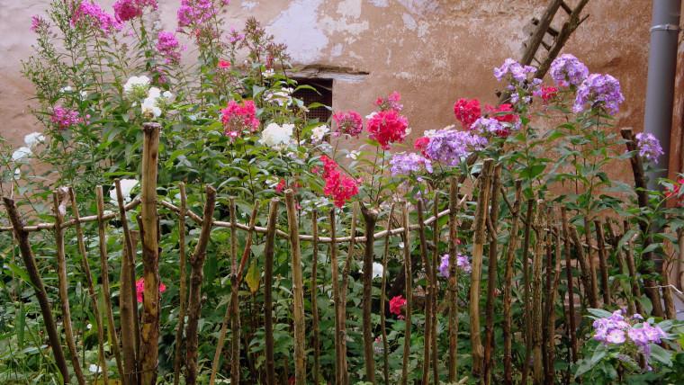 Offene Gärten in Münsingen