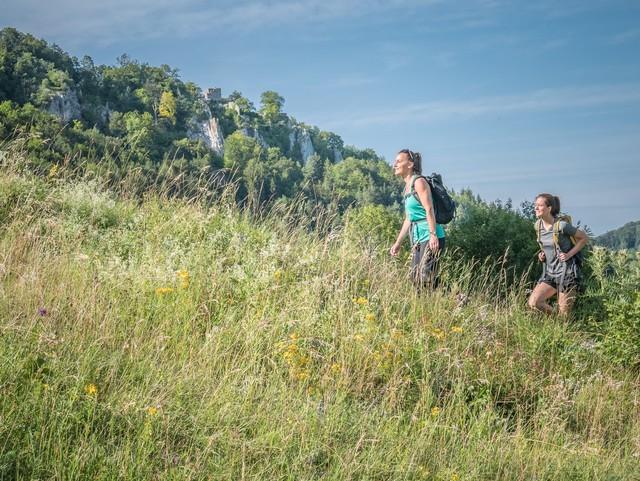 Auf dem Premiumwanderweg hochgehswiggert im Großen Lautertal in Münsingen im Biosphärengebiet Schwäbische Alb.