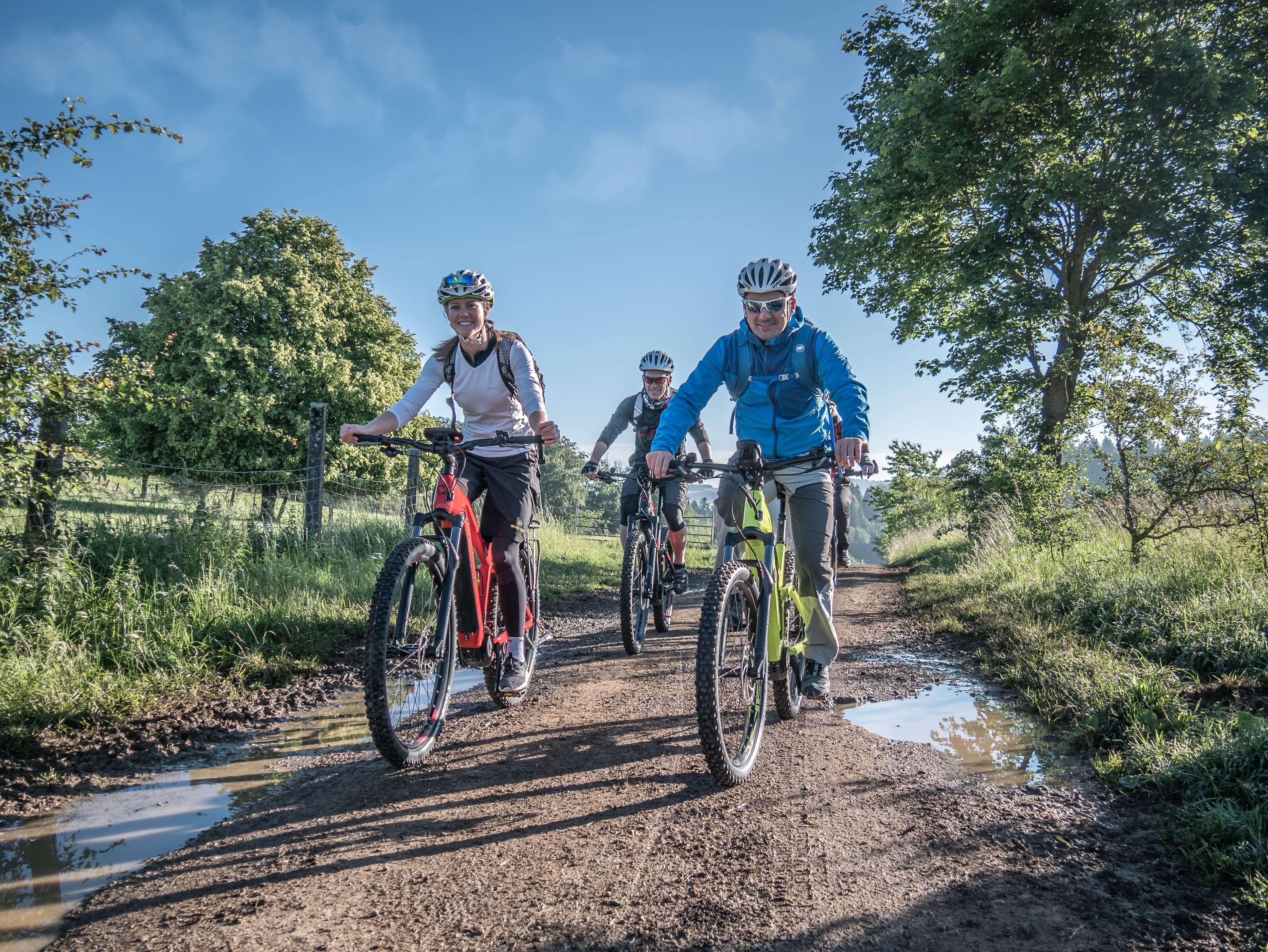Vier Radfahrer*innen fahren mit E-Bikes auf einem Feldweg vorbei an hohen Gräsern, Wiesen und Weiden. Es ist ein sonniger Tag am Morgen.