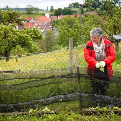 Albschnecken-Züchterin Rita Goller