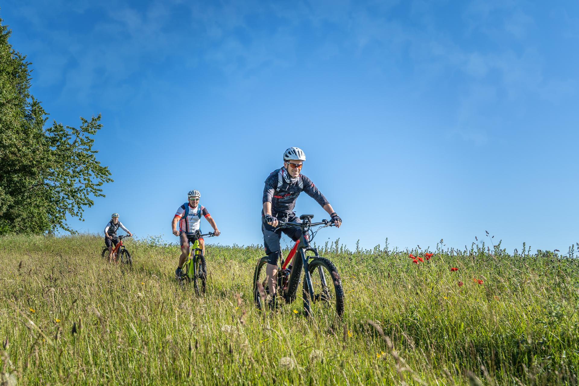 Drei Radfahrer*innen fahren mit E-Bikes durch eine hohe Wiesen mit verschiedenen Gräsern und vereinzelt Mohnblumen. Der Himmel ist blau.