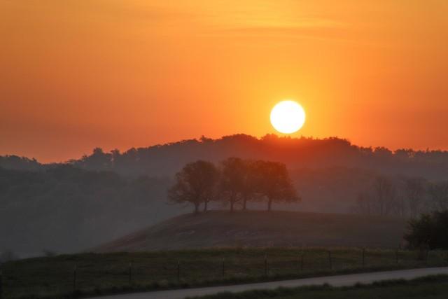 Eine weite Landschaft im Sonnenuntergang. Die Sonne steht direkt über den Baumwipfeln am Horizont und taucht den Himmel in rot. Im Vordergrund ist eine umzäunte Weide und ein Schotterweg.